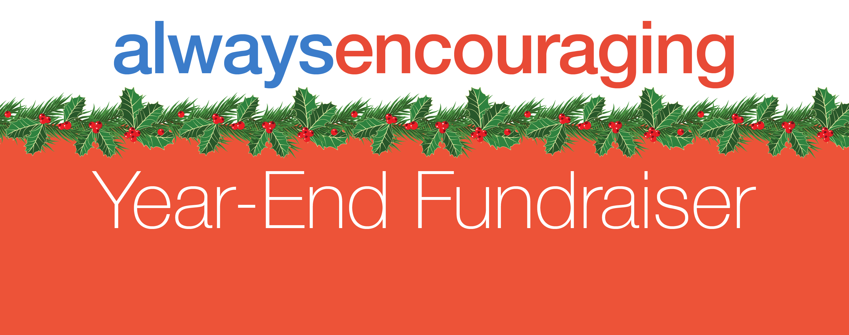 Year-end fundraiser 2017
